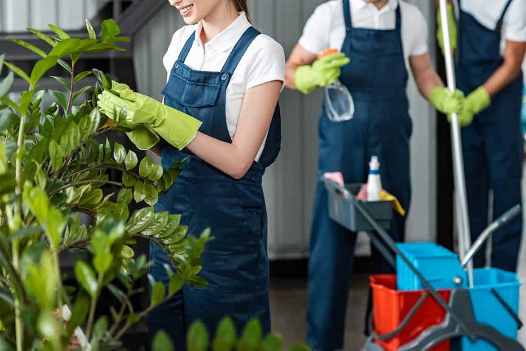 Cropped view of smiling cleaner wiping plants while colleagues standing on background