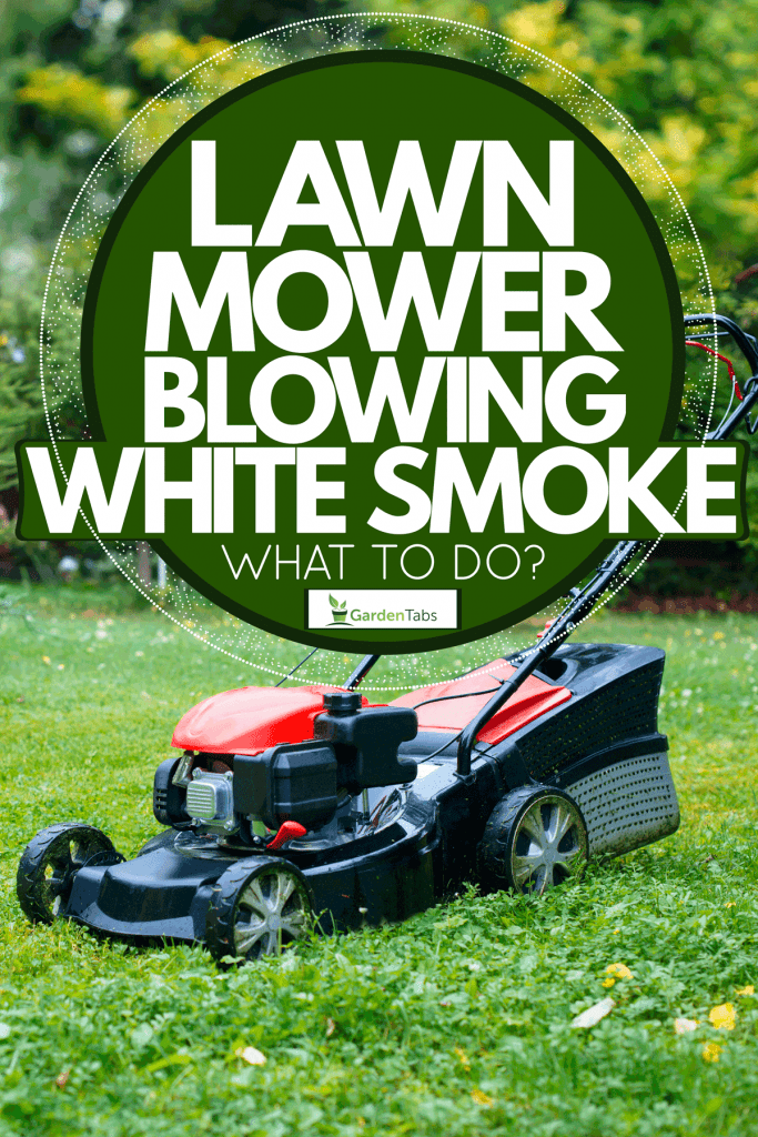 A lawn mower placed on the garden, Lawn Mower Blowing White Smoke - What To Do?