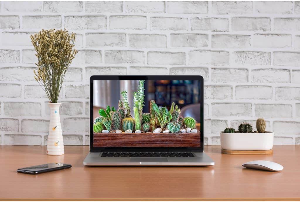 Blank screen of laptop computer with dry flowers, iPhone X and cactus vase on white bricks background