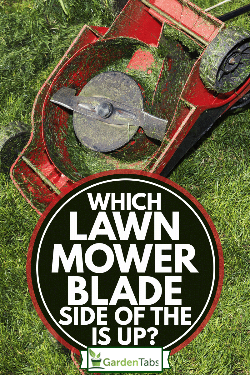 Red lawn mower upside down and container full of grass, Which Side Of The Lawn Mower Blade Is Up?