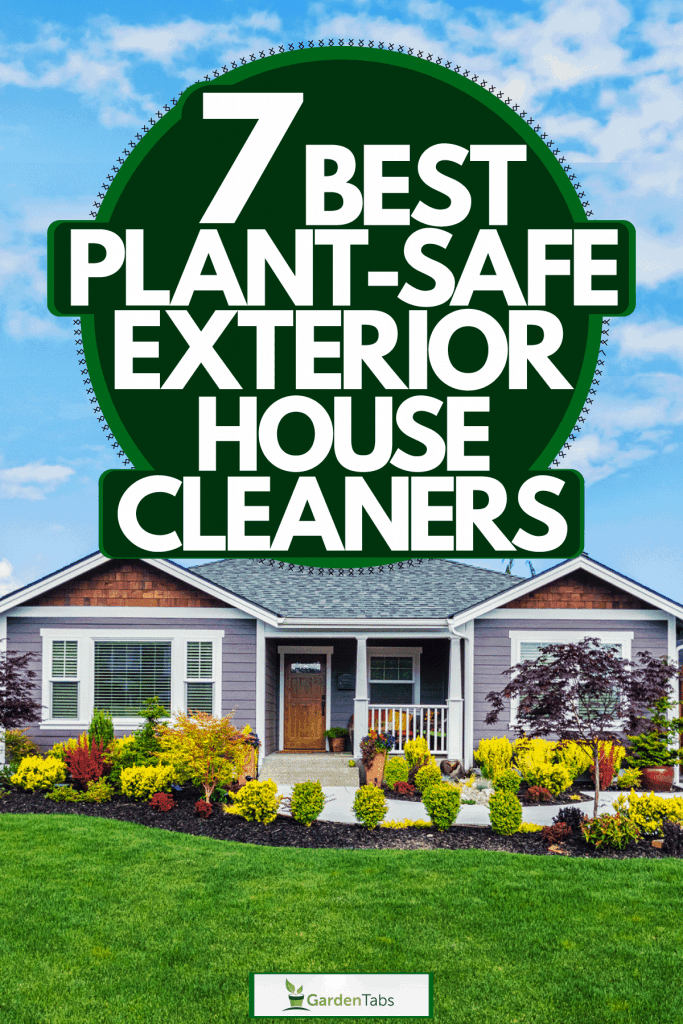 A small ranch themed house with purple sidings, gray asphalt roofing, and a beautiful garden with plants and flowers, 7 Best Plant-Safe Exterior House Cleaners