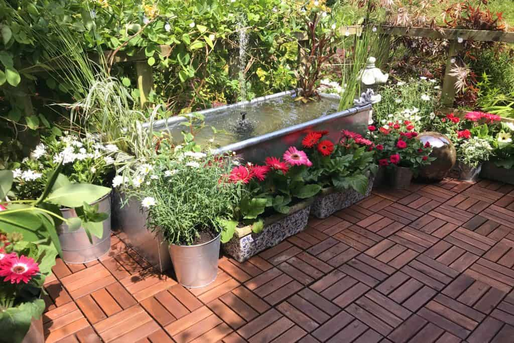 A small concrete fish pond decorated with margaritas and other variegated flowers