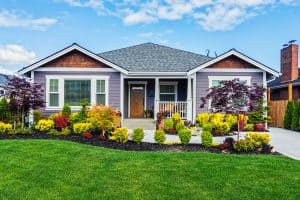 Read more about the article 7 Best Plant-Safe Exterior House Cleaners