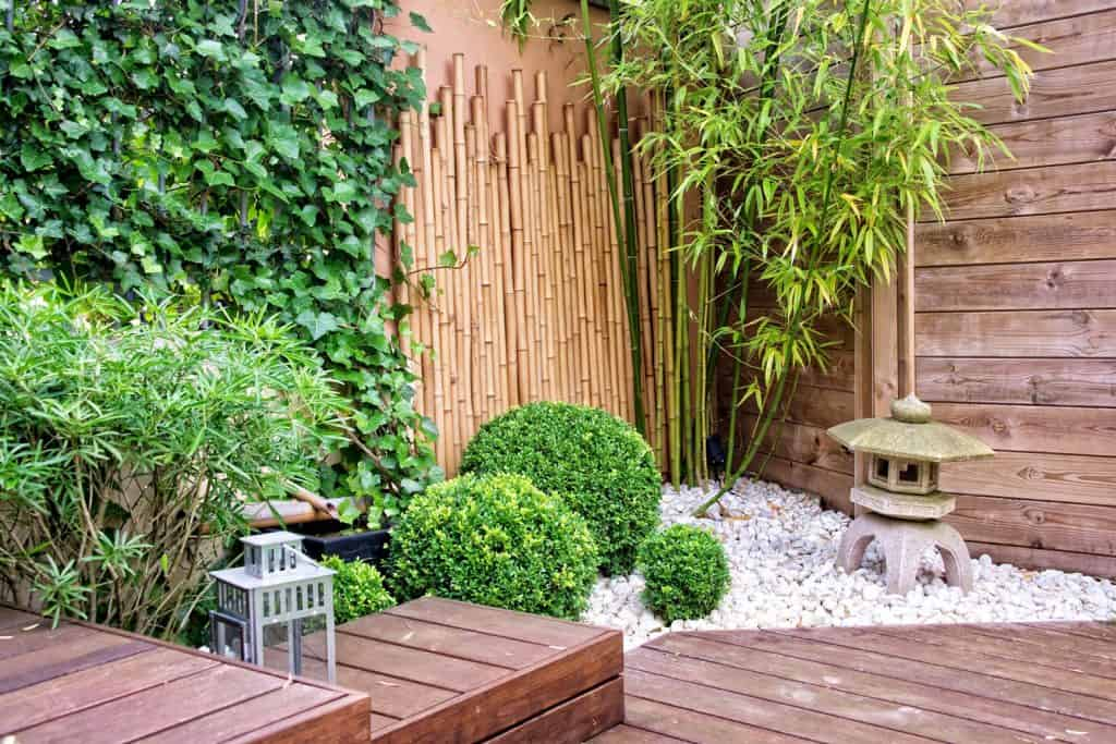 A spacious rustic themed patio area decorated with bamboos, shrubs, and other varieties of plants