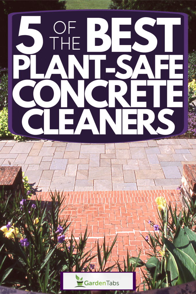 A spacious and modern garden with brick and stone flooring with a center aisle filled with flowers, 5 Of The Best Plant-Safe Concrete Cleaners