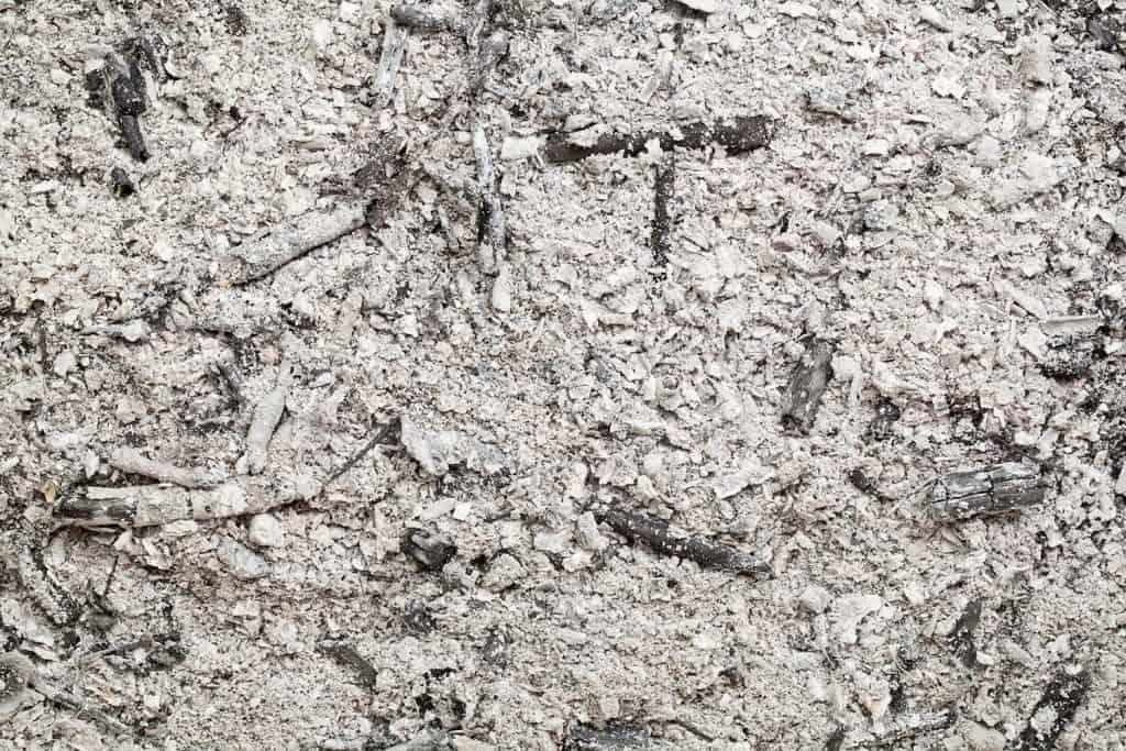 Burned wood ash background