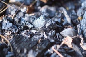Read more about the article Does Wood Ash Kill Moss Or Weeds?