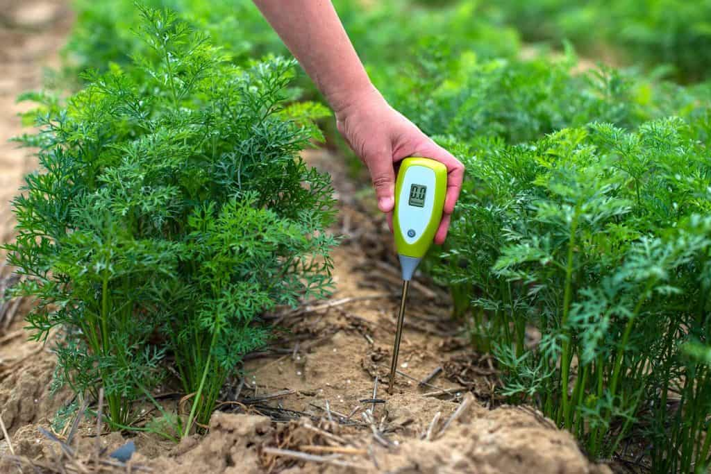 Measure soil with digital device
