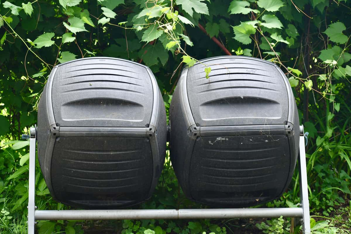 A close-up of a double tumbler compost bins in the garden with grapevines in the background