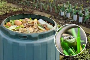 Read more about the article Does Compost Attract Snakes? [And What To Do About That]