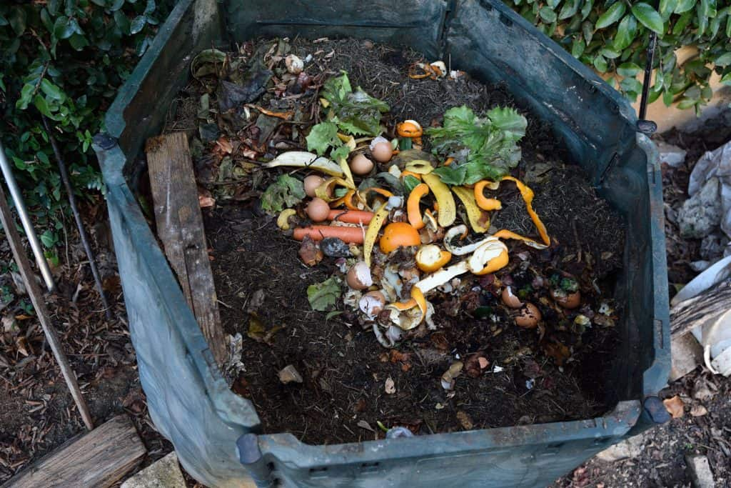 A compost bin filled with decomposed vegetables, egg shells, and other perishable vegetables