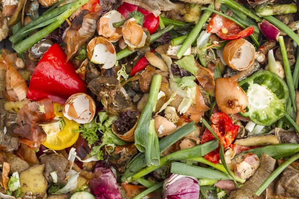 A heap of vegetables and fruit peels in a compost bin
