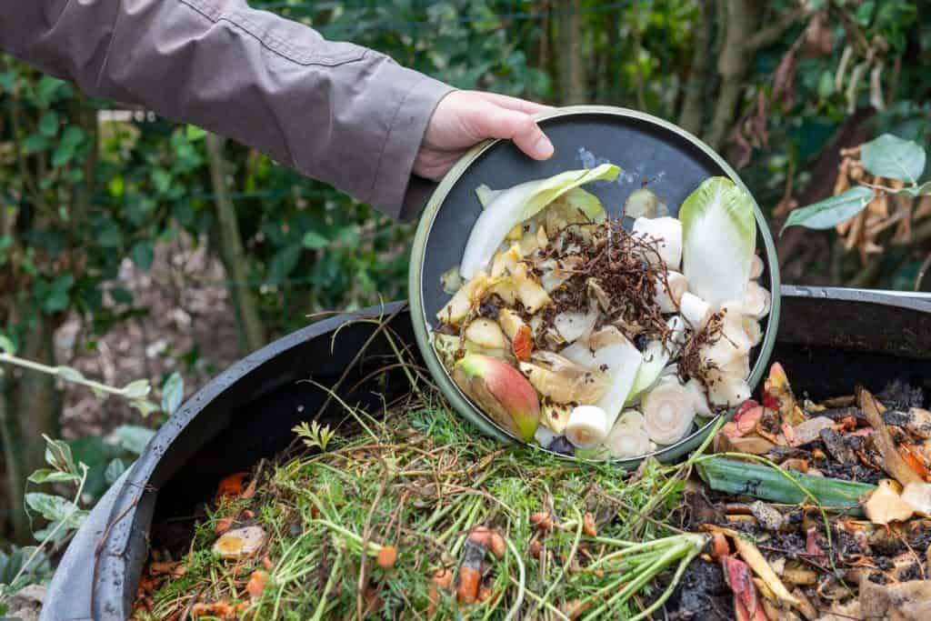 A man dumping sliced vegetable leftovers to the compost bin
