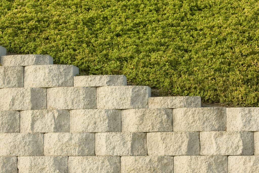 A retaining wall with plants on the back