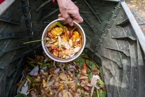 Read more about the article Should A Compost Pile Be In The Sun Or Shade?