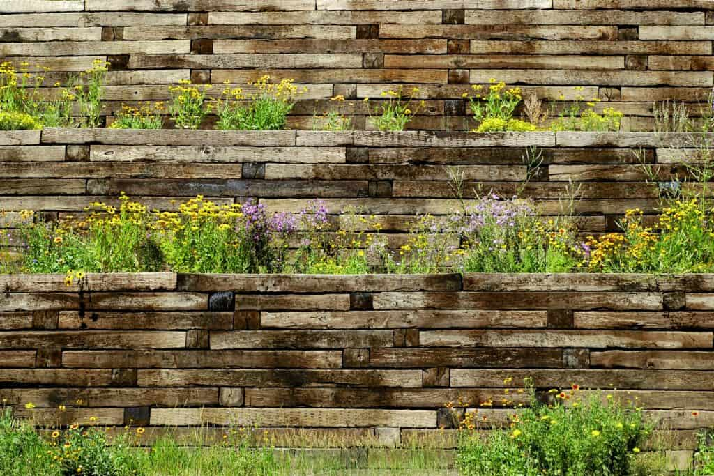 Different layers of retaining wall with small marigold and lavender on the planters