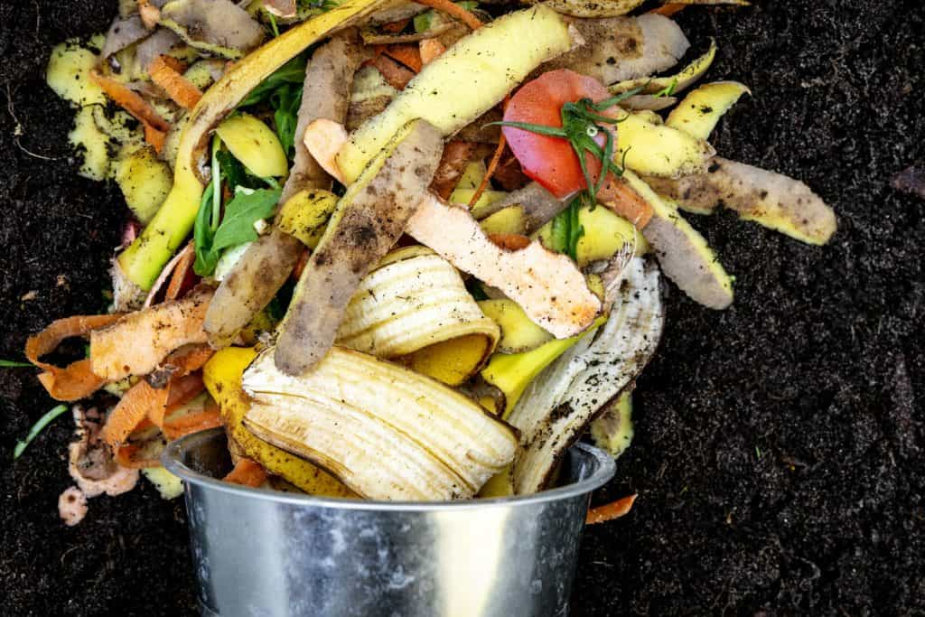 Different peels of fruits and other vegetables inside a compost bin