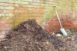 Read more about the article Why Is My Compost Turning White?