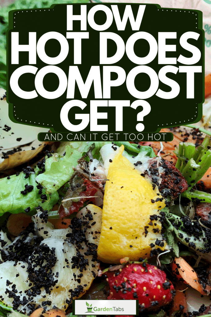 Vegetable leftovers and other fruit peels inside a compost bin, How Hot Does Compost Get? [And Can It Get Too Hot]