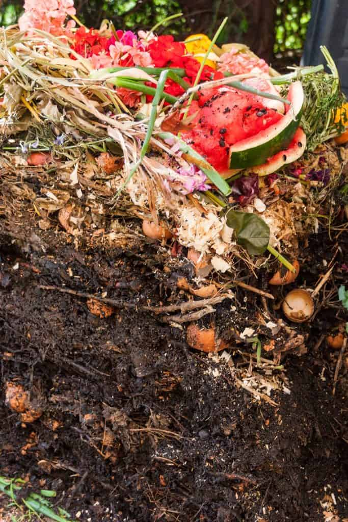 Opened up compost pile showing the layers of decomposing material