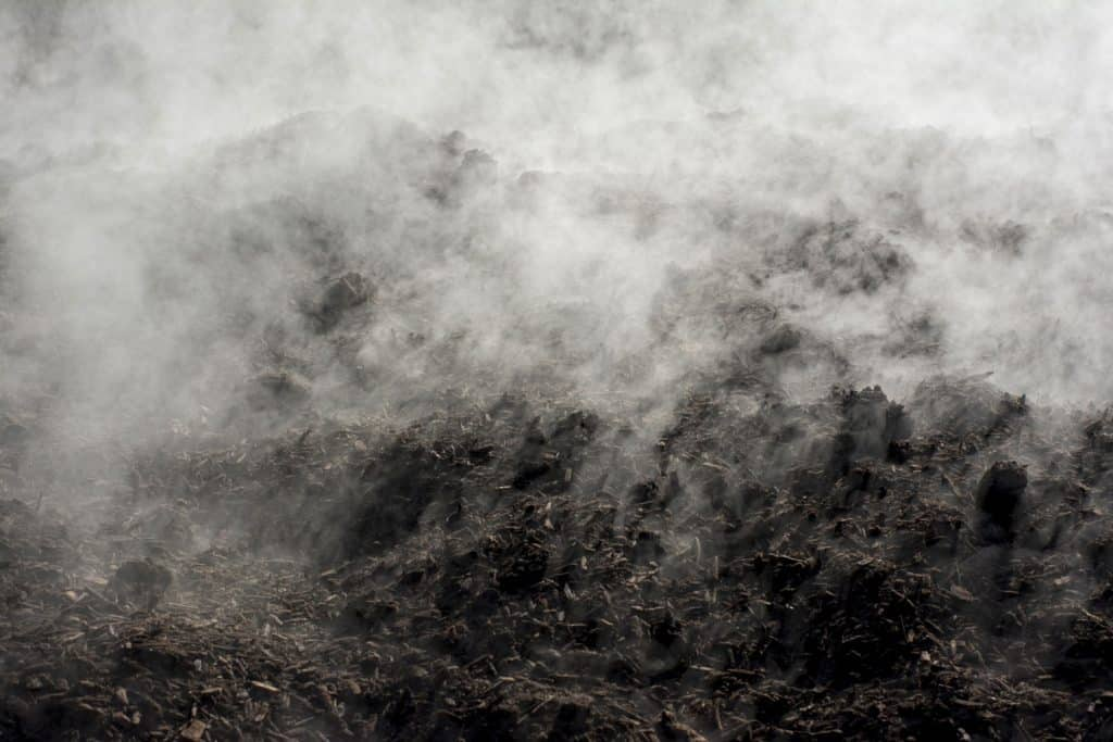 Steam coming out of the compost pile due to fermentation
