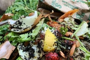 Read more about the article How Hot Does Compost Get? [And Can It Get Too Hot]