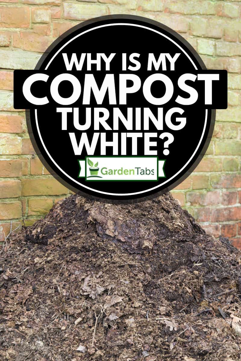 Homemade garden compost heap with leaf mould for use as a mulch or organic fertilizer, Why Is My Compost Turning White?