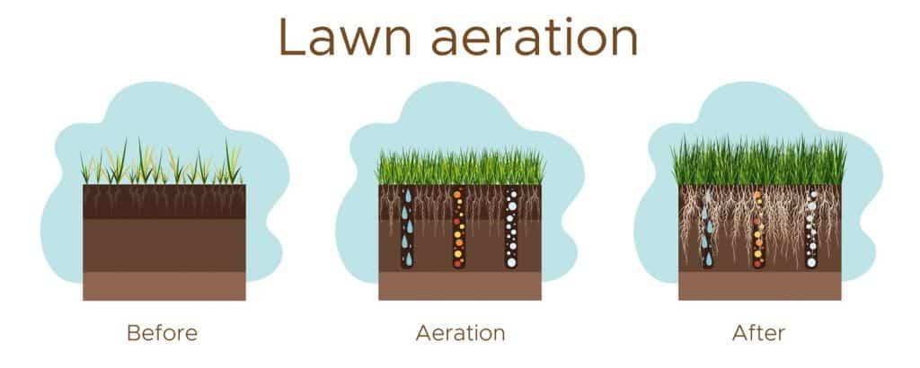 A lawn aeration process illustration