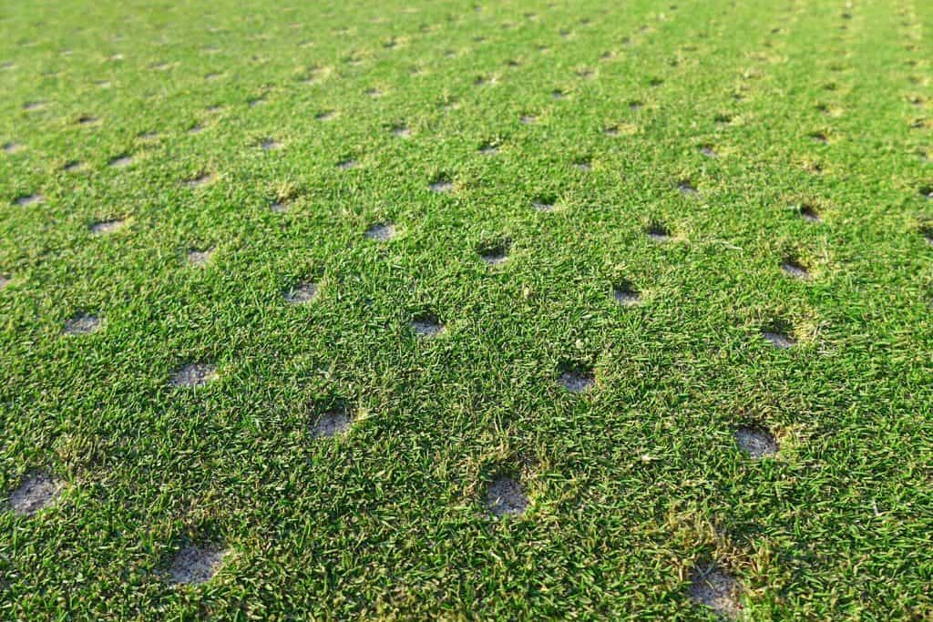 Aerated putting green on golf course