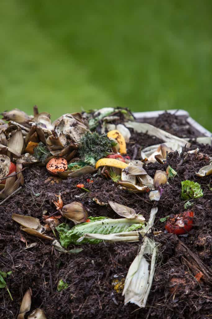 An organic compost pile photographed up close