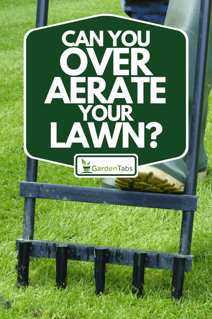 A man aerating in his lawn, Can You Over Aerate Your Lawn?
