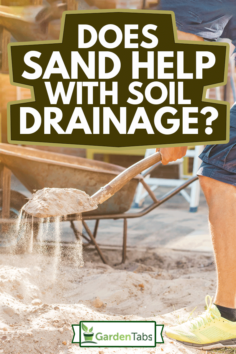 Cropped image of man digging sand with a shovel for garden, Does Sand Help With Soil Drainage?
