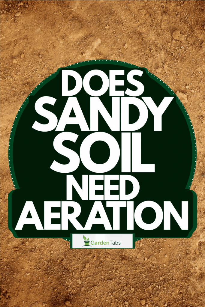 Detailed photo of sandy texture photographed up close, Does Sandy Soil Need Aeration?