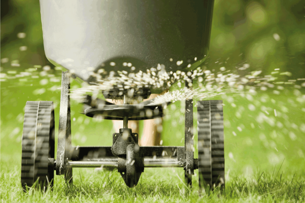 Fertilizer pellets spraying from spreader