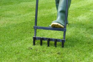 Read more about the article Can You Over Aerate Your Lawn?