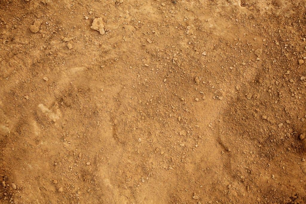 Sandy texture photographed up close