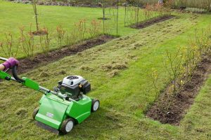 Read more about the article Should You Aerate Your Lawn Every Year?
