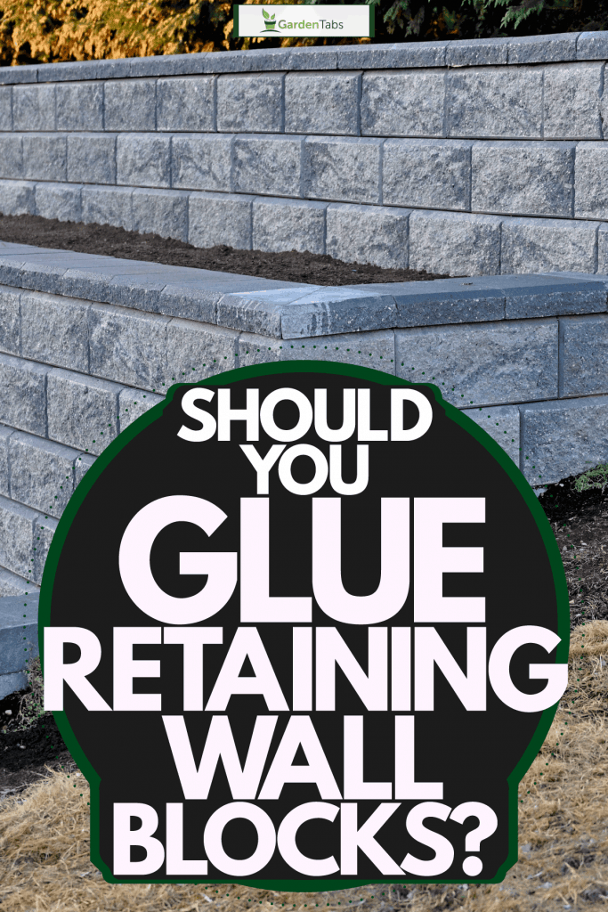Retaining blocks intended for a retaining wall, Should You Glue Retaining Wall Blocks?
