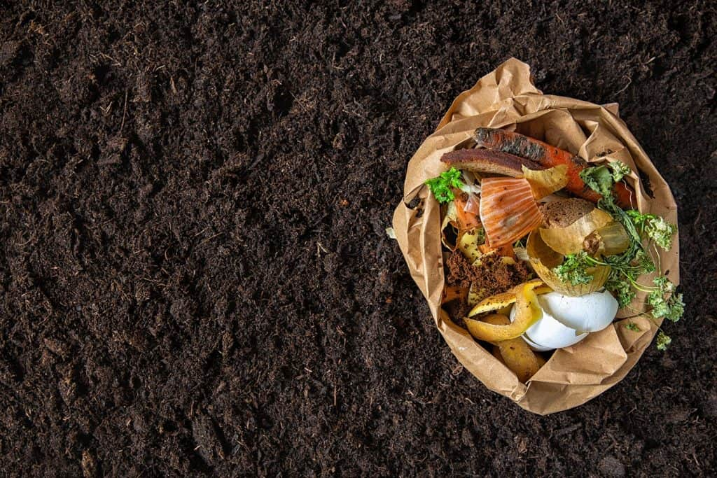 Sorting of food waste in the environmental packages