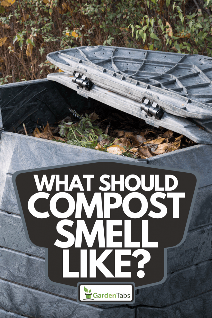 A composting bin for recycling kitchen and garden organic waste, What Should Compost Smell Like?