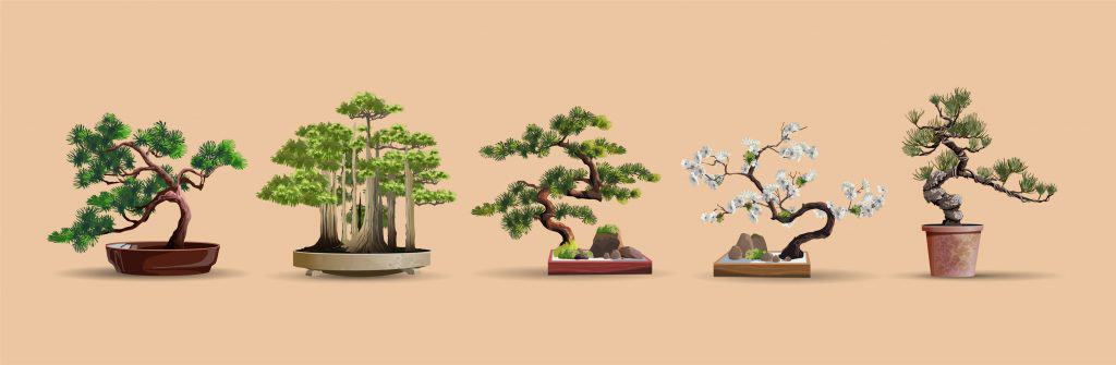 A set of bonsai trees on a brown background