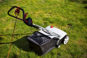 Read more about the article Should You Aerate Before Overseeding A Lawn?