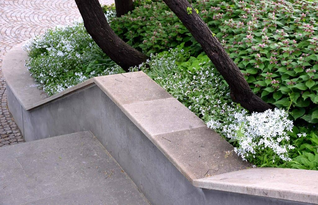 Concrete retaining wall at the large staircase in the park