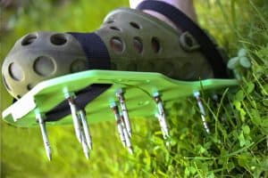 Read more about the article How To Aerate A Lawn With Spike Shoes